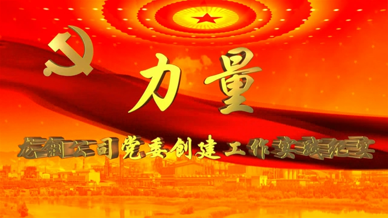 《力量》——龙钢公司党委创建工作实践纪实
